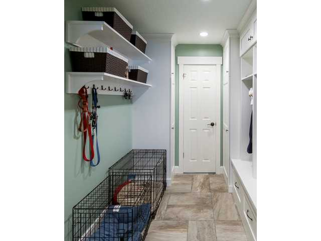 Home remodeling with pets in mind