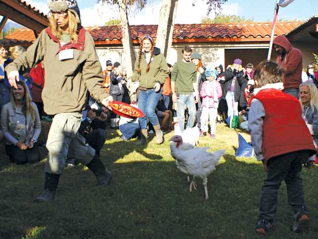 Turkeys Are the Guests of Honor at Acton Thanksgiving Event