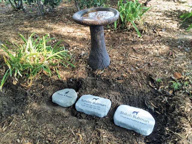 New memorial pet garden at st stephens memorial stones in the new pet memorial garden at st stephens episcopal church publicscrutiny Image collections