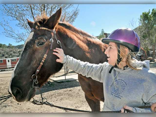 Nonprofit ranch hosts open house to raise funds, showcase programs