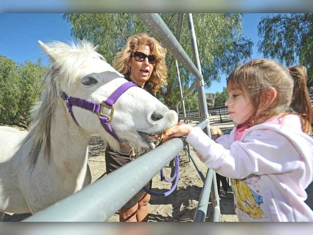 'Round-Up' event raises money for local nonprofit