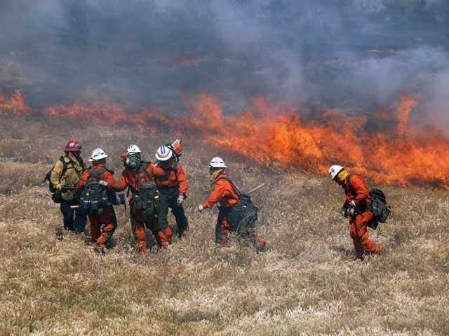 40 Acres Burn South of Gorman