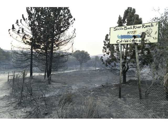 Badly burned area in Agua Dulce. Signal photo by Dan Watson