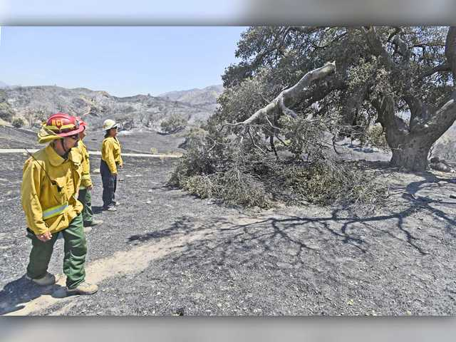 UPDATE: Sand fire 65 percent contained