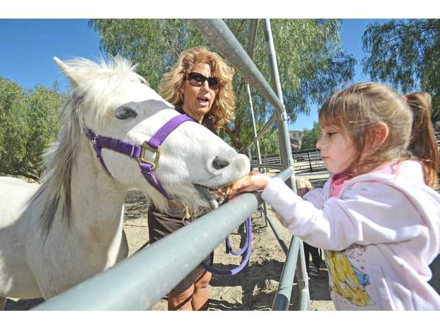 Providing emotional stability through horse-therapy