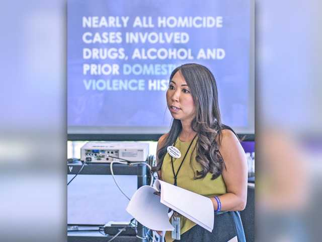Inaugural Domestic Violence Summit brings community together