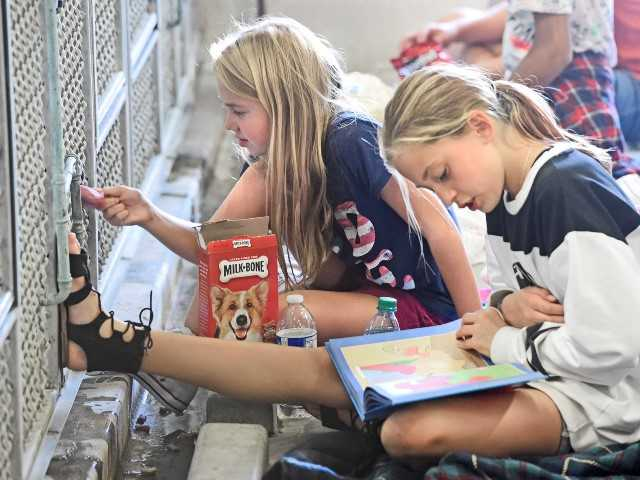 Castaic Middle School students partner with local animal shelter