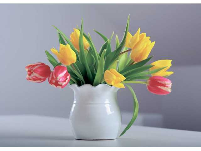 Cut flowers can last longer if you practice a few easy tips.  Gardening experts advise homeowners that wish to decorate with cut flowers to change the water often, remember to add water on a regular basis and when purchasing cut flowers get them home as soon as possible and recut the stems.