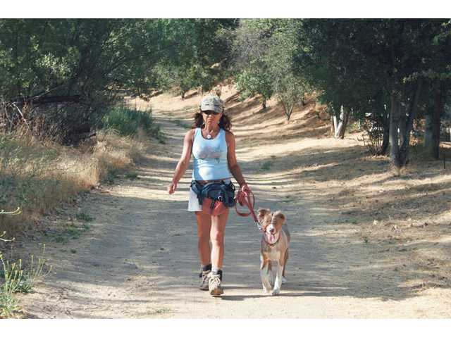 Keep your dog on a leash as you traverse the many outdoor trails in the Santa Clarita Valley. Many dangers lurk along trails for your canine companion.