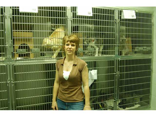 Christine Jeschke, of the Indianapolis Humane Society, in the cat holding area. Like many shelters, Indy Humane has more cats than dogs, with cats typically harder to adopt out.