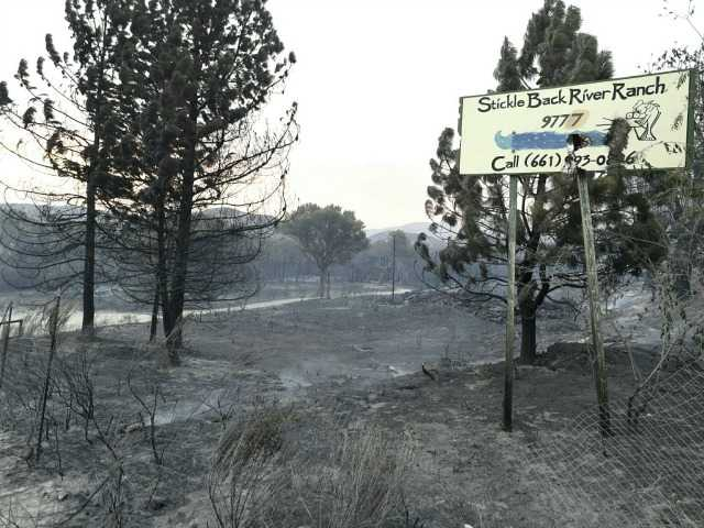 <p>Badly burned area in Agua Dulce. Signal photo by Dan Watson</p>