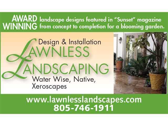 Lawnless Landscaping