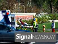 Signal News Now: Vehicle Strikes Pedestrian in Valencia