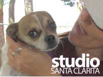 Studio Santa Clarita: Signal Pet Project; The Great Shakeout