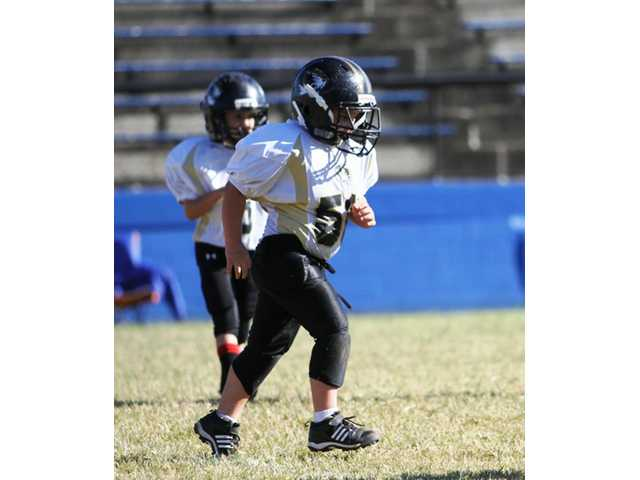 Peewee Tigers to face Owls for championship