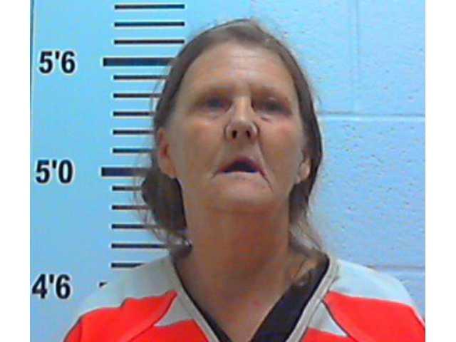 Mother, son busted with meth lab