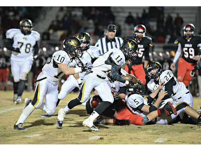 Tigers fall in first round of playoffs