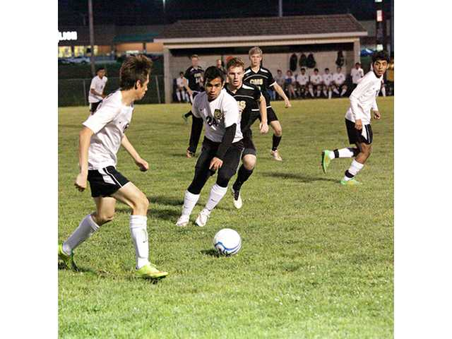 Tiger soccer finishes as runner up in district