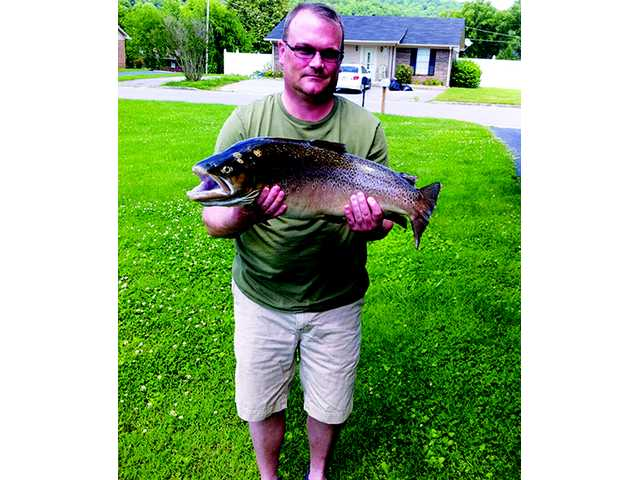 Horn catches 12-pound brown trout
