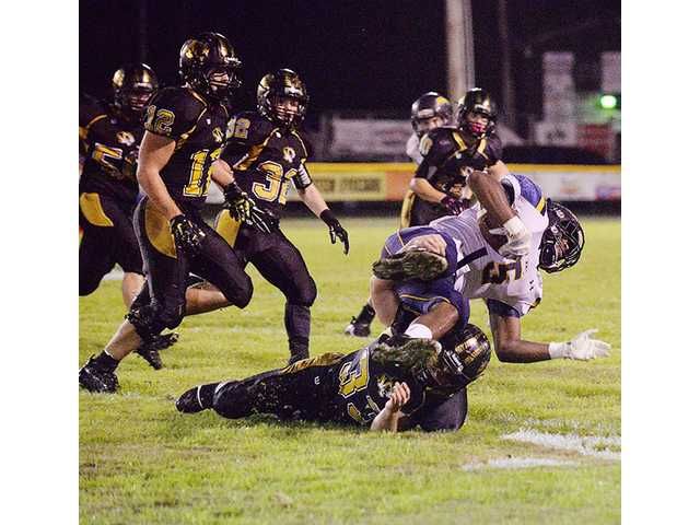 Tigers fall in playoffs