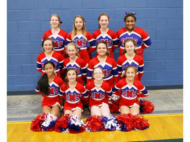 DMS Cheer Squad