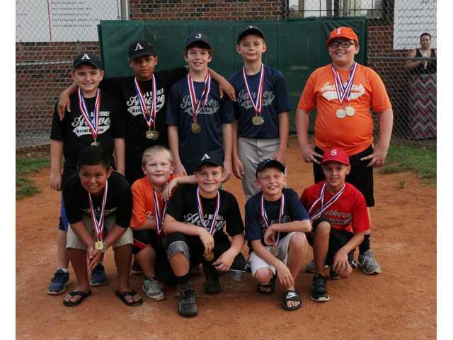 DeKalb Youth Baseball All-Stars chosen for 2016