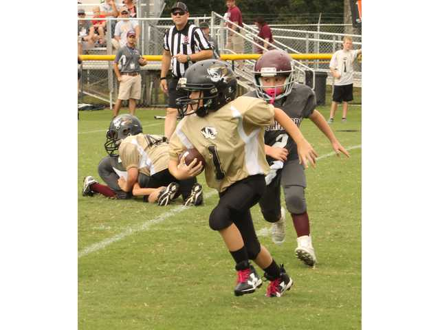 Pee-Wee, Junior Tigers, take wins over White County