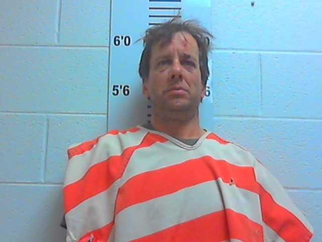 Carroll sentenced in February hit and run