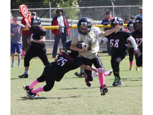 Pee-Wee Tigers chop up Cavaliers for conference championship