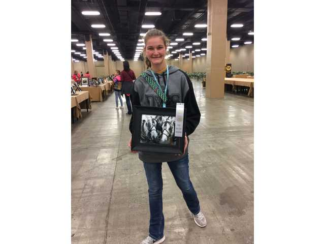 Crook represents DeKalb West well at Junior Beta State convention contest