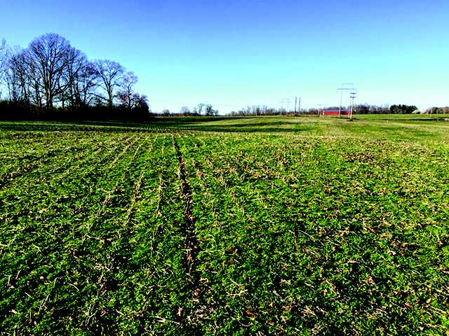 Soccer field land purchased