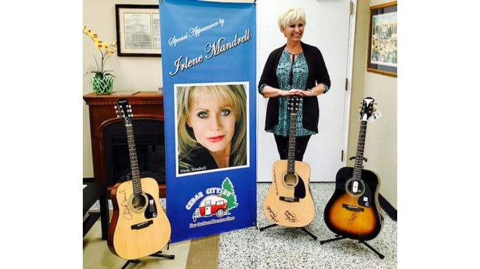 Chamber auction to feature signed guitars
