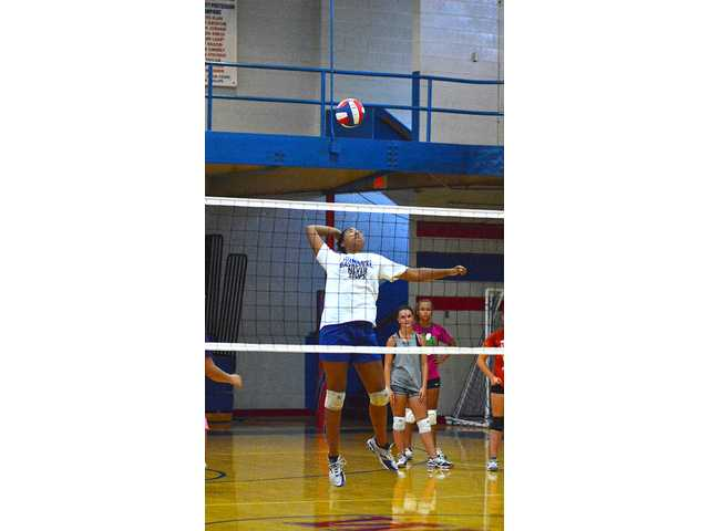 Rogers takes reins of WCHS volleyball