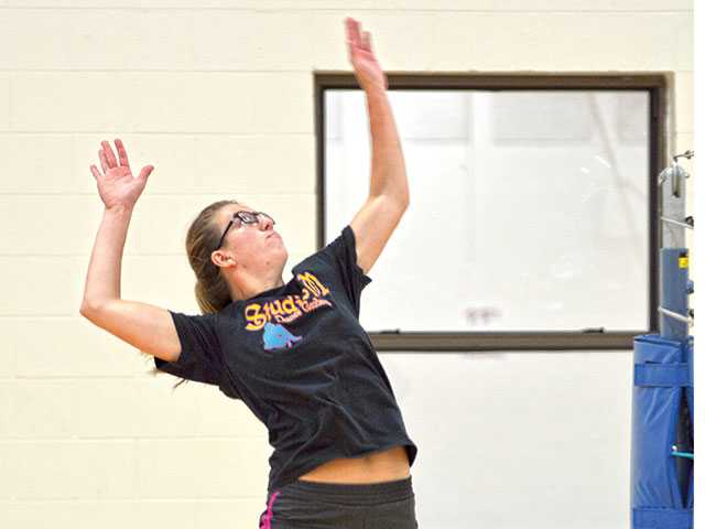 Volleyball team looks to continue improvement