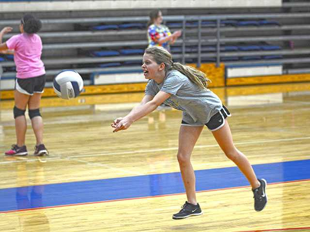 Fifty attend Fisher's volleyball clinic