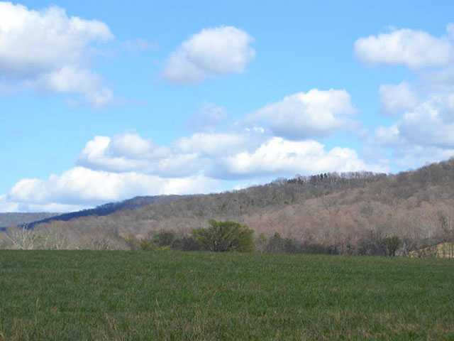 Ben Lomand Mountain up for auction