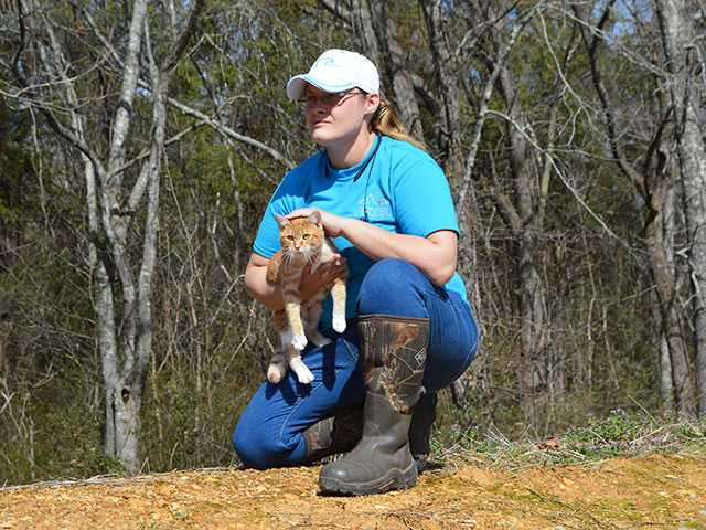 Animal Control budget approved, raises on hold