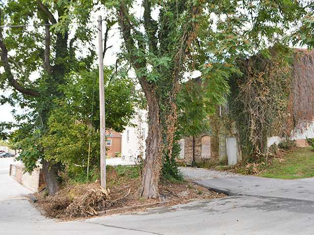 City, Myers get to root of building's problems