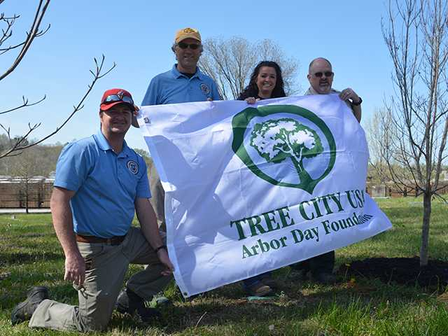 McMinnville remains part of Tree City USA project