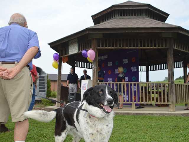 City gets grant for dog park