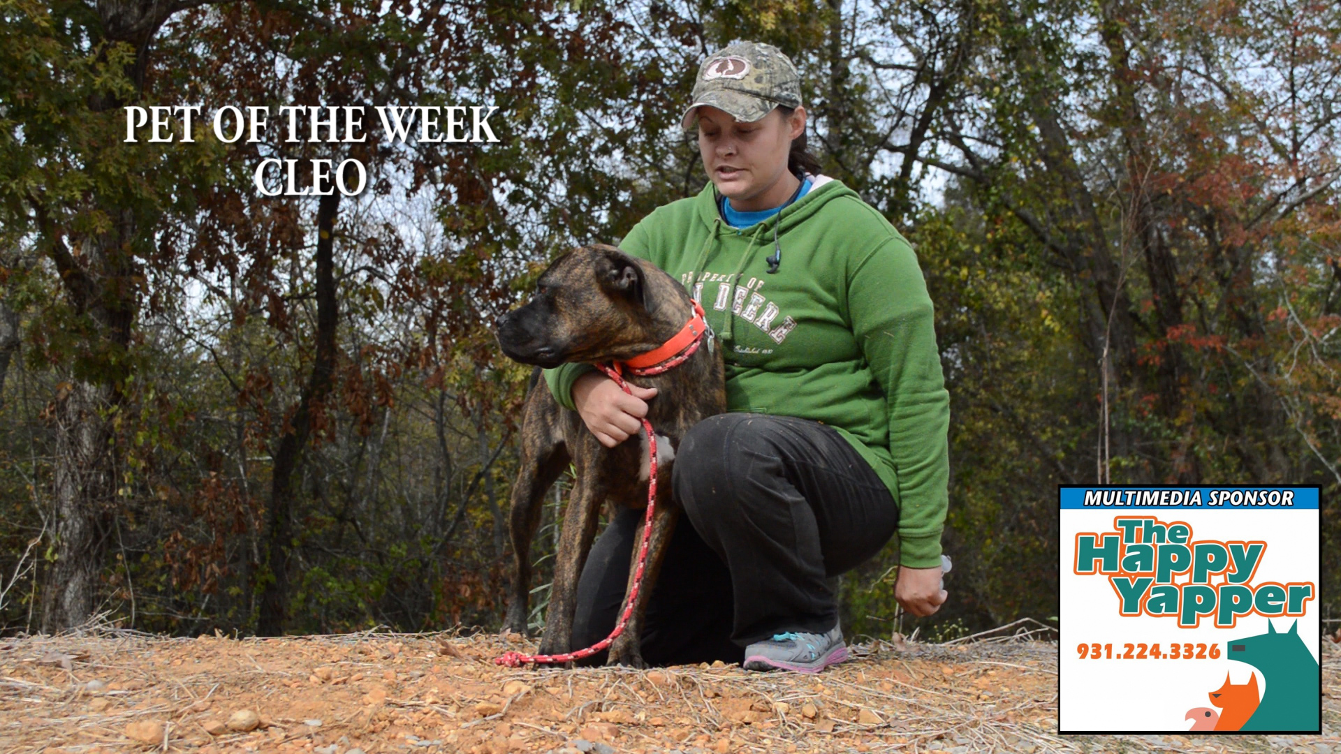 VIDEO: Pet of the Week - Cleo