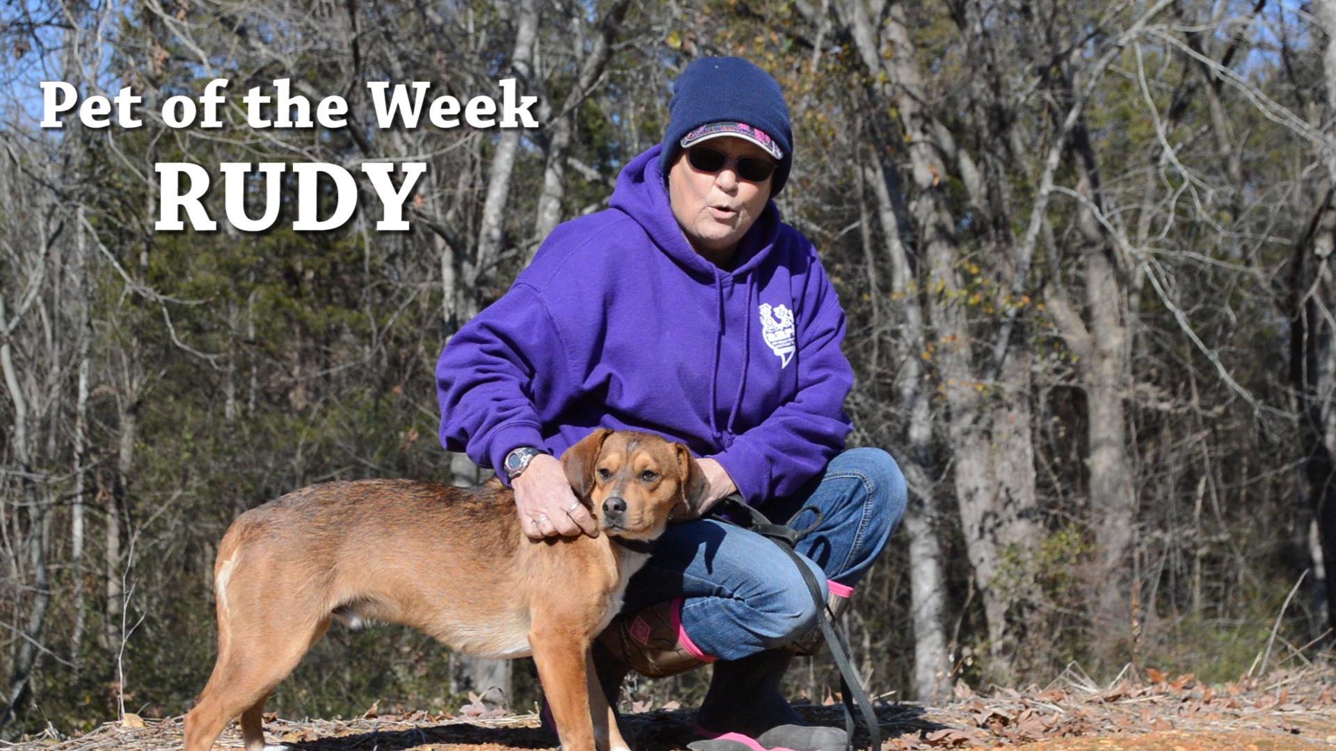 VIDEO: Pet of the Week - Rudy
