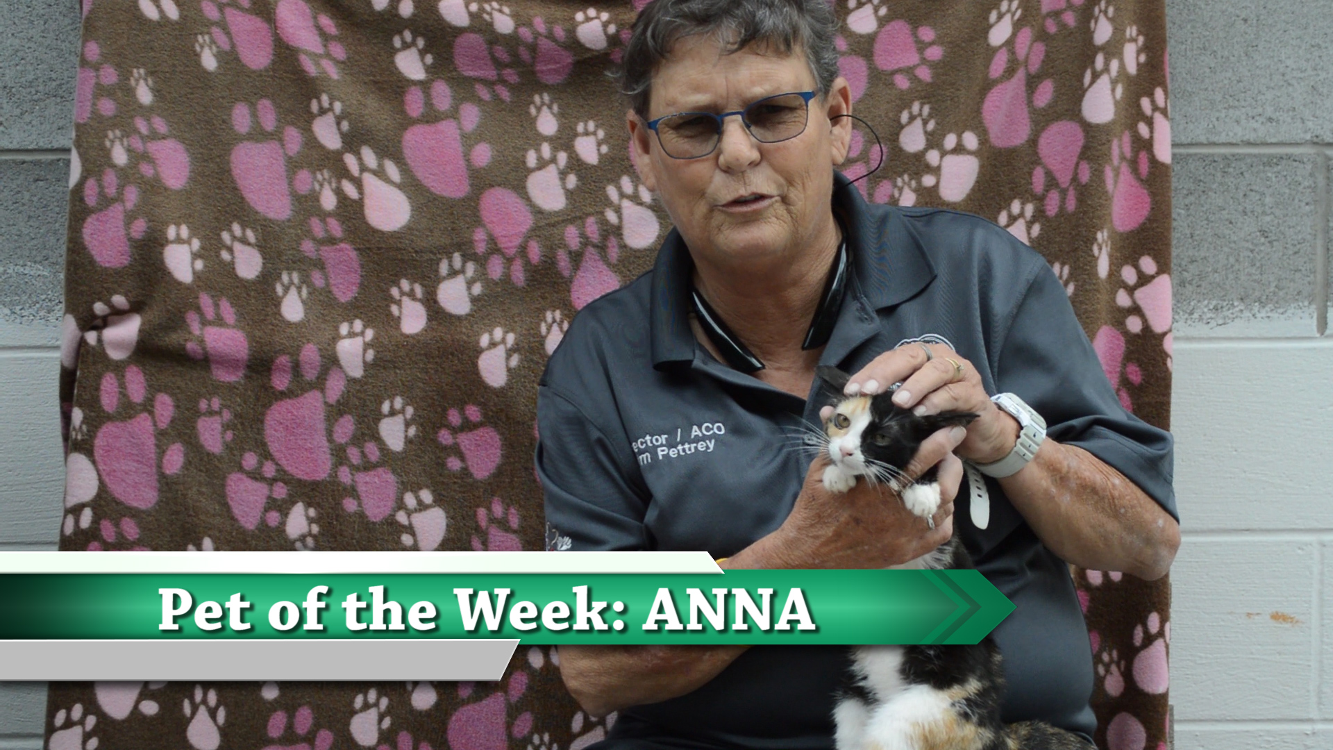 VIDEO: Pet of the Week - Anna