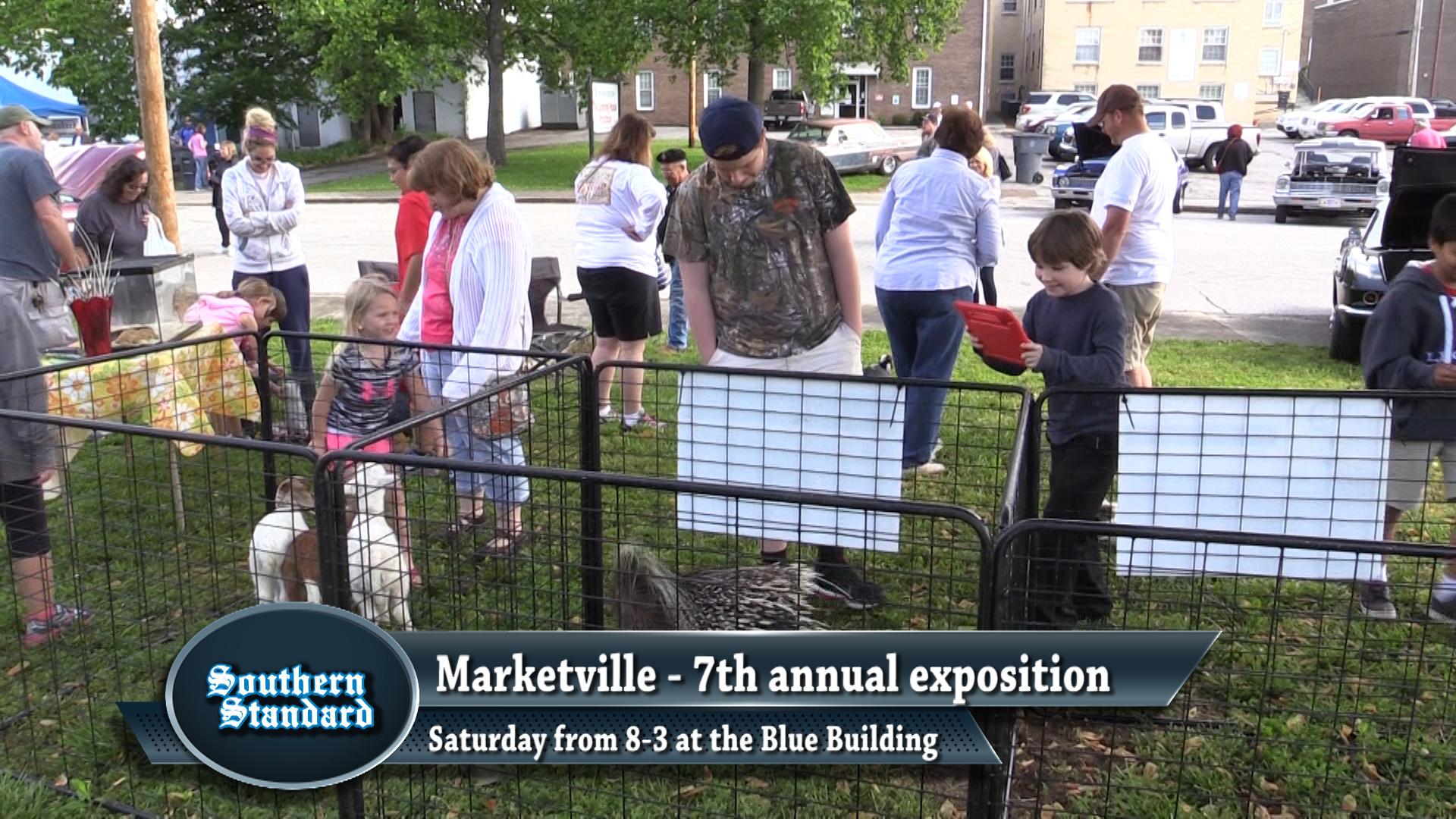 VIDEO - Marketville 2017