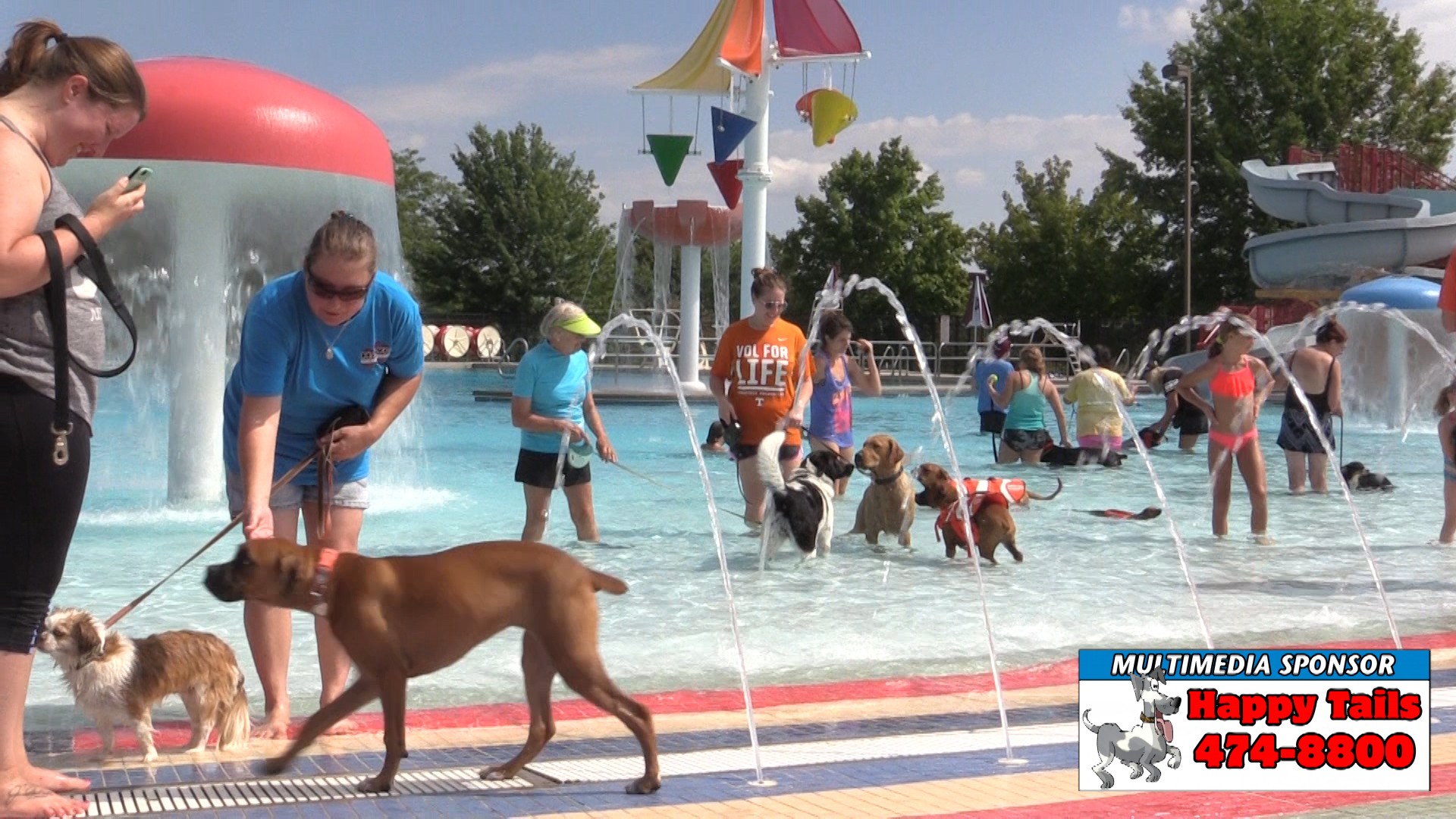 VIDEO: Water Paws at Gilley Pool