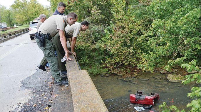Man survives plunge off bridge