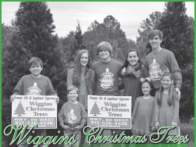 Wiggins Trees