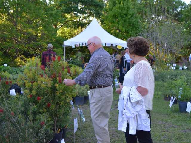Botanic Garden Circle Party