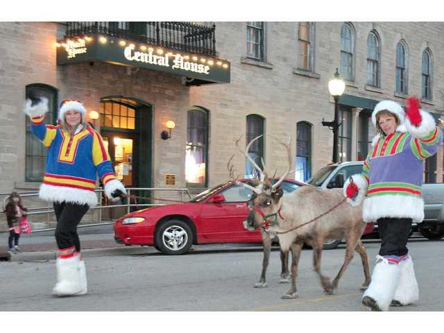 Reindeer a popular attraction at Community Christmas Festival