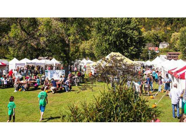 Driftless Art Festival is seeking volunteers